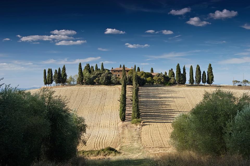 tosscany-fields